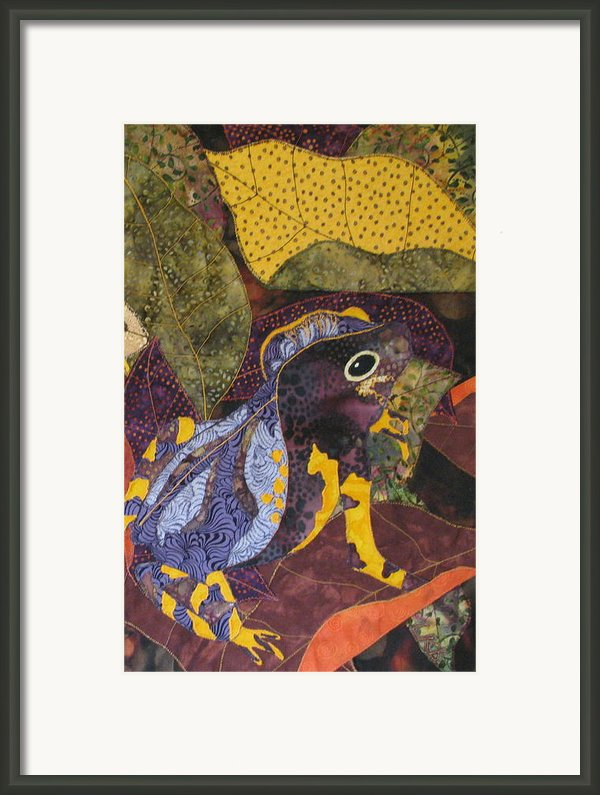 Camouflaged Forest Toad Framed Print By Lynda K Boardman