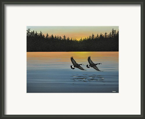 Canada Geese Framed Print By Kenneth M  Kirsch