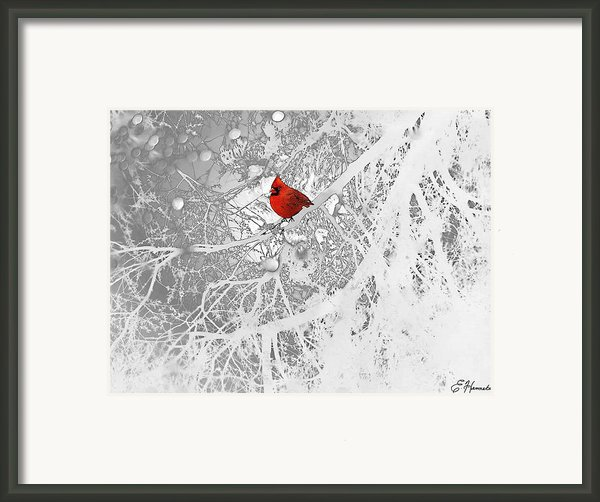 Cardinal In Winter Framed Print By Ellen Henneke