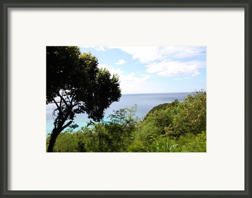 Caribbean Cruise - St Thomas - 121286 Framed Print By Dc Photographer