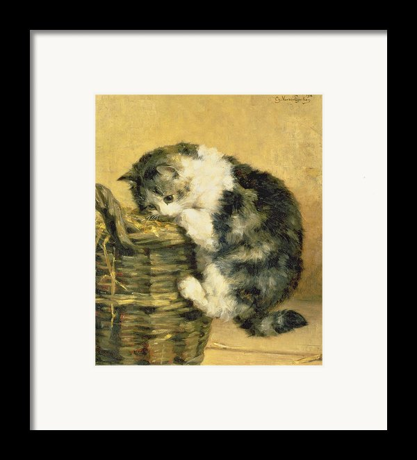 Cat With A Basket Framed Print By Charles Van Den Eycken