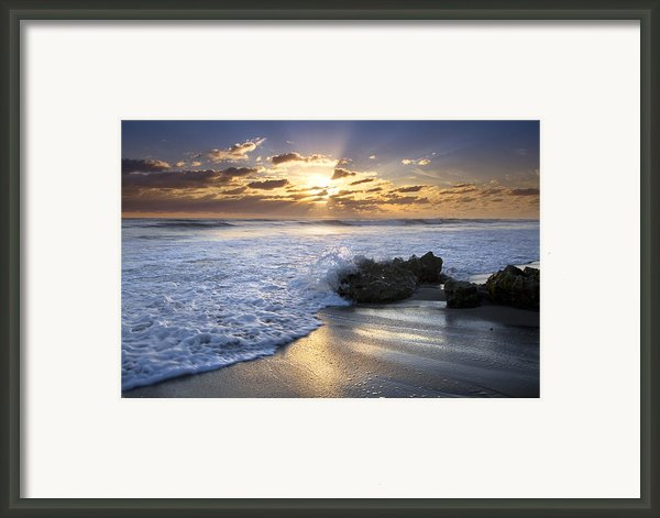 Catching The Light Framed Print By Debra And Dave Vanderlaan
