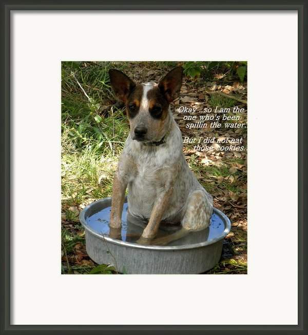 Caught In The Act... Framed Print By Camille Reichardt