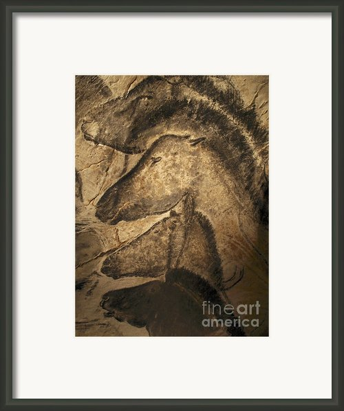 Cave Paintings Framed Print By Javier Trueba And Spl And Photo Researchers
