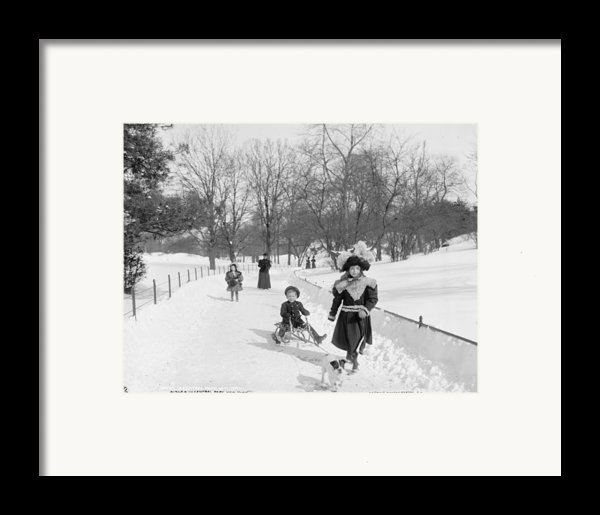 Central Park In New York Framed Print By Anonymous