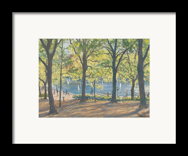Central Park New York Framed Print By Julian Barrow