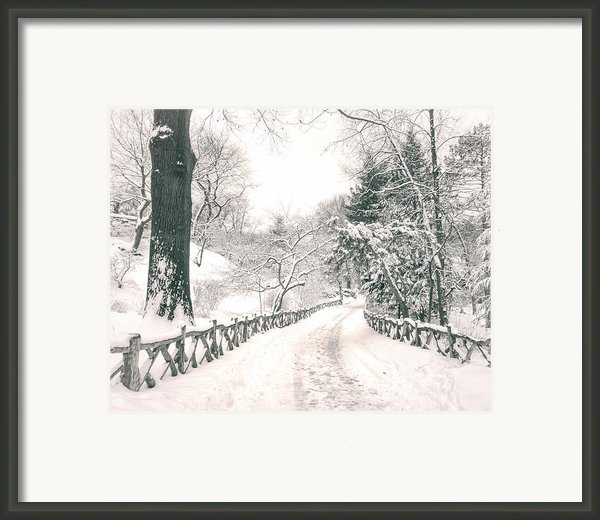 Central Park Winter Landscape Framed Print By Vivienne Gucwa