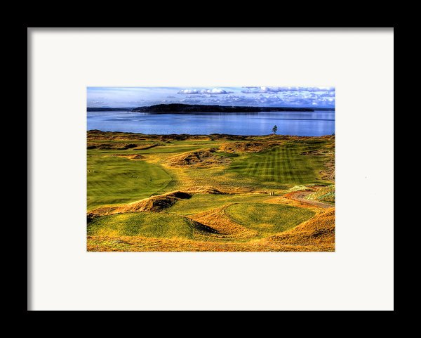 Chambers Bay Lone Tree Framed Print By David Patterson
