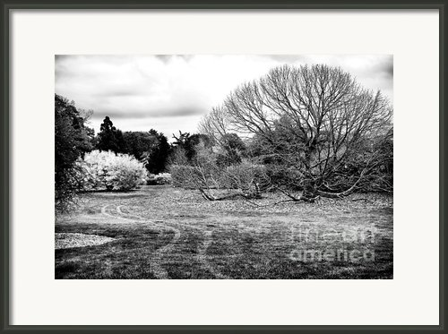 Change Of Season Framed Print By John Rizzuto