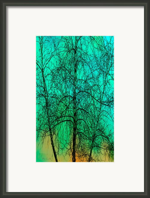 Change Of Seasons Framed Print By Bob Orsillo