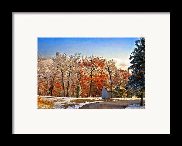 Change Of Seasons Framed Print By Lois Bryan