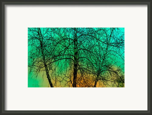 Change Of Seasons Number Tw0 Framed Print By Bob Orsillo