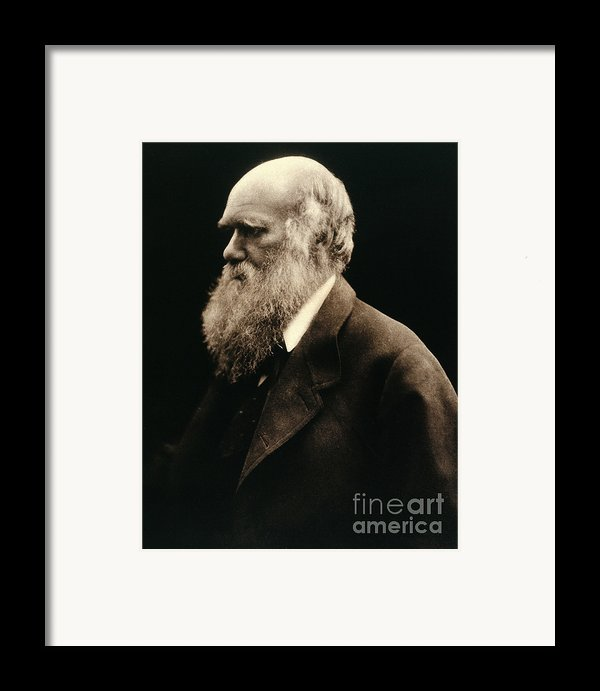 Charles Darwin By Julia Margaret Framed Print By Wellcome Images