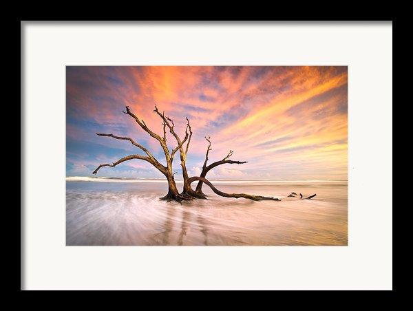 Charleston Sc Sunset Folly Beach Trees - The Calm Framed Print By Dave Allen