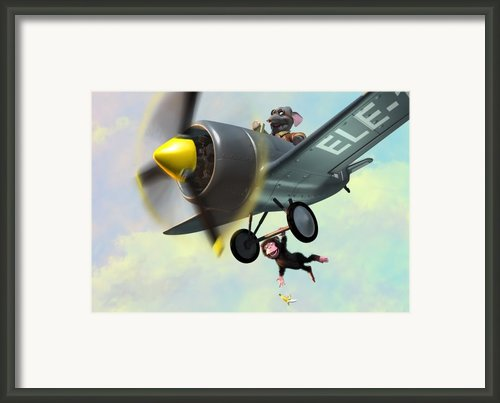 Cheeky Monkey Hanging From Plane Framed Print By Martin Davey