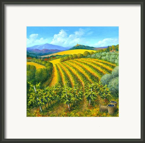 Chianti Feeling 30 X 30 Framed Print By Michael Swanson