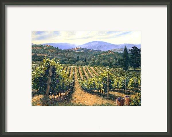 Chianti Vines Framed Print By Michael Swanson