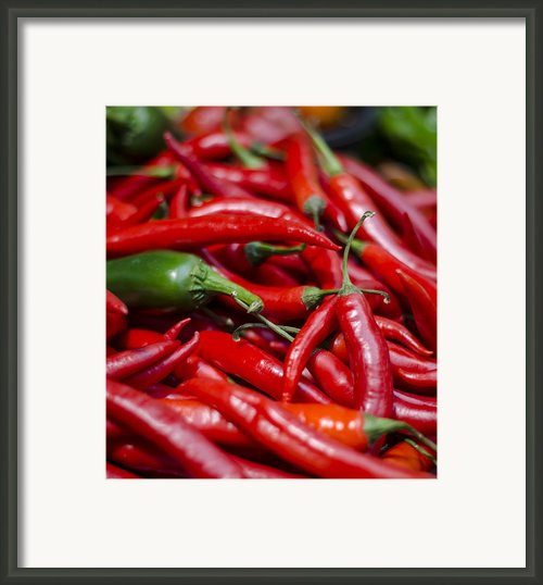 Chili Peppers At The Market Framed Print By Heather Applegate