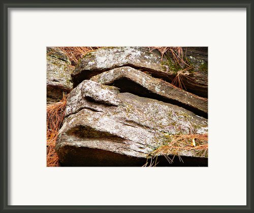Chin Up Framed Print By Chris Sotiriadis