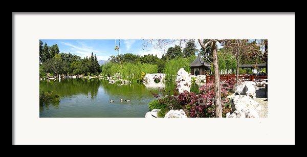 Chinese Gardens Framed Print By Bedros Awak