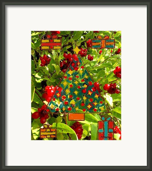 Christmas Berries Framed Print By Patrick J Murphy