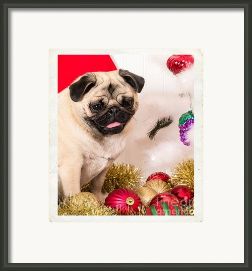 Christmas Morning Framed Print By Edward Fielding