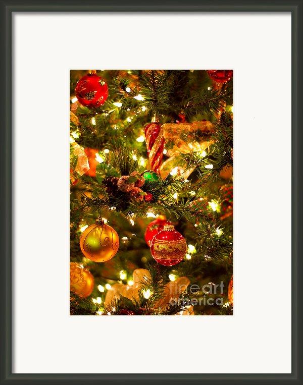 Christmas Tree Background Framed Print By Elena Elisseeva