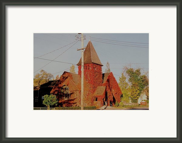 Church Vines Framed Print By Trent Mallett