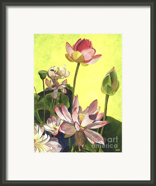 Citron Lotus 1 Framed Print By Debbie Dewitt