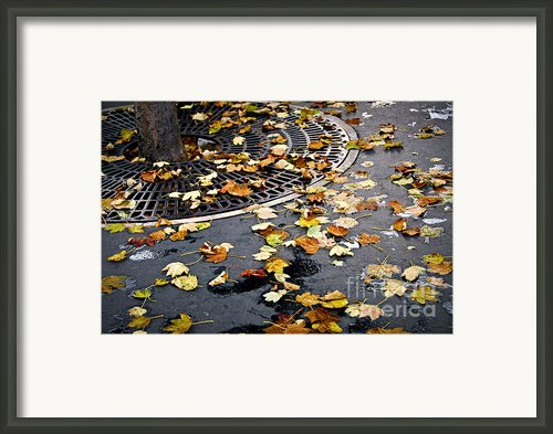 City Fall Framed Print By Elena Elisseeva