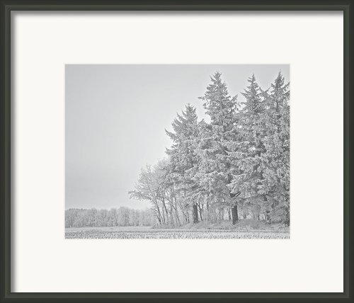 Cold Lace Framed Print By Odd Jeppesen