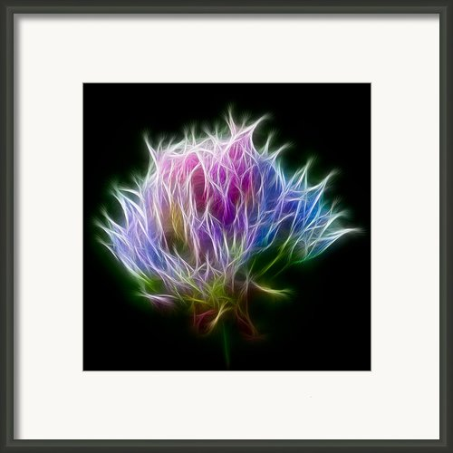 Color Burst Framed Print By Adam Romanowicz