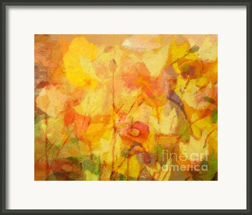 Color Sinfonia Framed Print By Lutz Baar