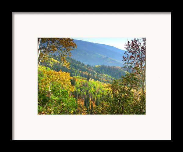 Colorful Colorado Framed Print By Brian Harig