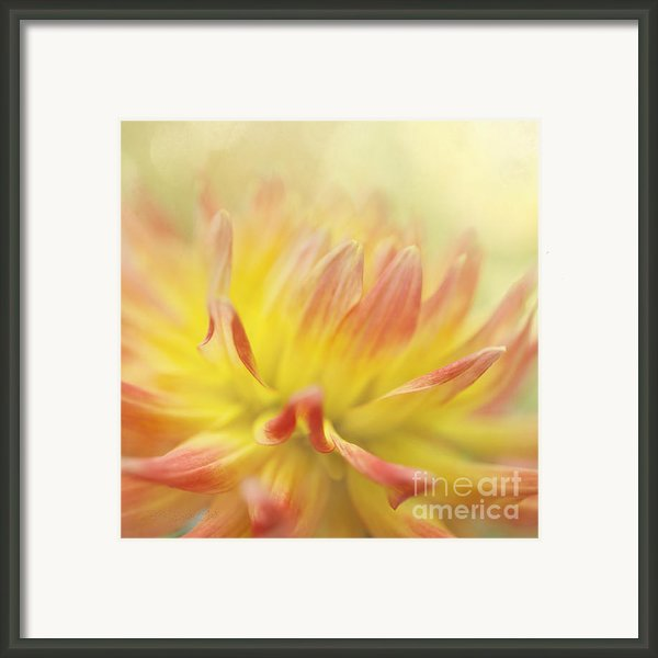 Colors Of Late Summer Framed Print By Reflective Moments  Photography And Digital Art Images