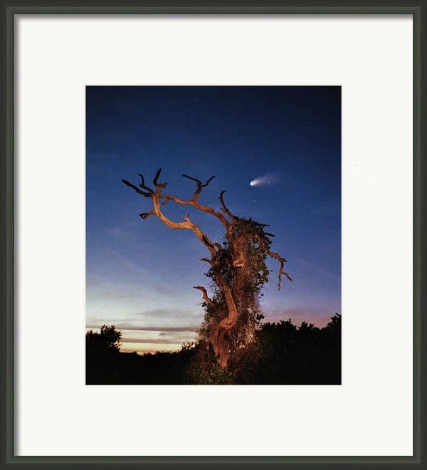 Comet Catcher. Lake Gentry. Framed Print By Chris  Kusik