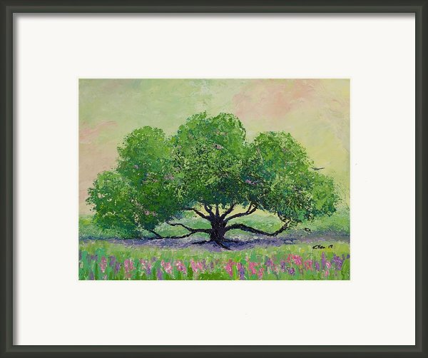 Comfort Framed Print By William Killen