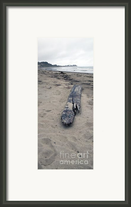 Coming At You Framed Print By Amanda Barcon