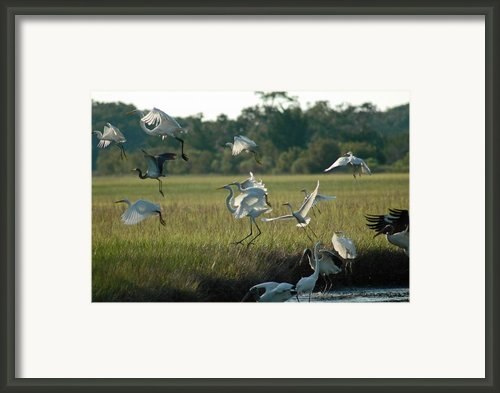 Community Uplift Framed Print By Bruce Gourley