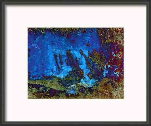 Coral Reef Framed Print By Tom Druin