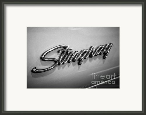 Corvette Stingray Emblem Black And White Picture Framed Print By Paul Velgos
