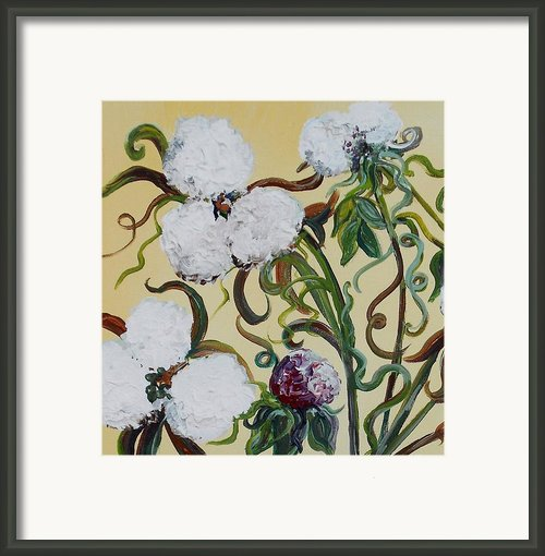 Cotton Squared Framed Print By Eloise Schneider