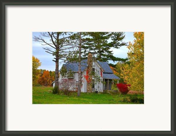 Country Cottage Framed Print By Julie Dant