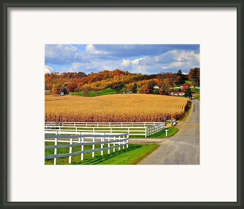 Country Lane Framed Print By Robert Harmon