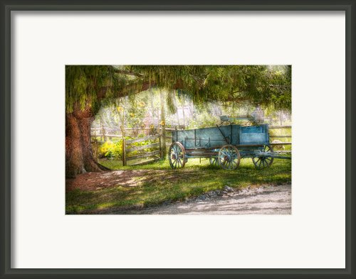 Country - The Old Wagon Out Back  Framed Print By Mike Savad