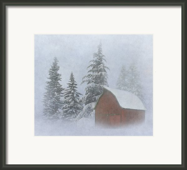 Country Winter Framed Print By Angie Vogel