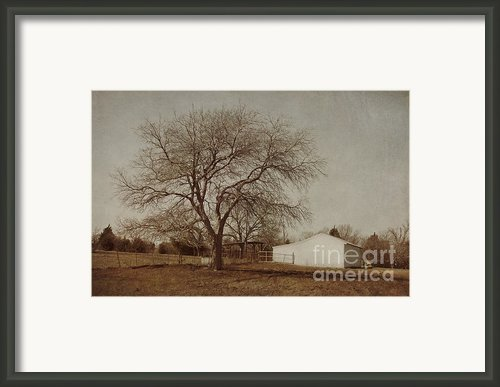 Countryside Framed Print By Elena Nosyreva