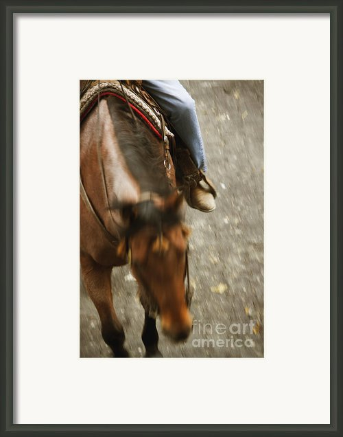 Cowboy Framed Print By Margie Hurwich