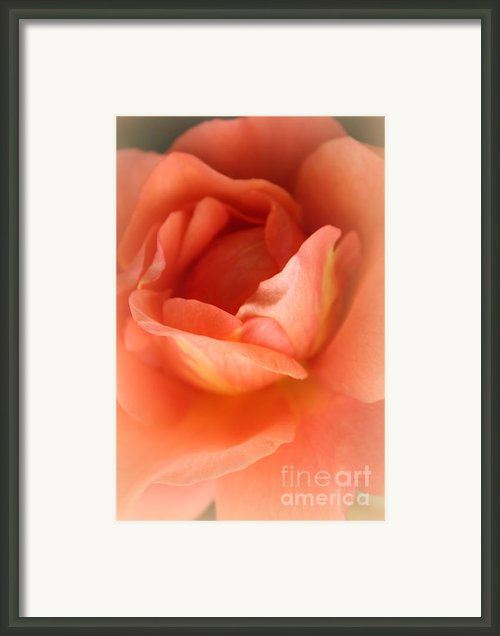 Cozy Warmth Framed Print By Sweet Moments Photography