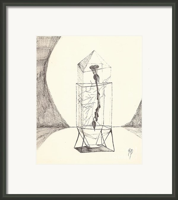 Cracked... Sketch Framed Print By Robert Meszaros